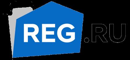 Официальный логотип компании РЕГ.РУ
