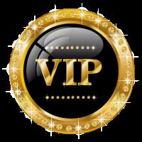 ВИП хостинг (vip-hosting)