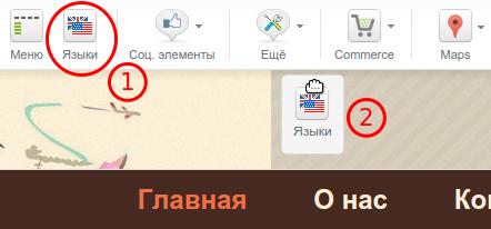"""Конструктор сайтов РЕГ.РУ. Модуль """"Языки""""."""