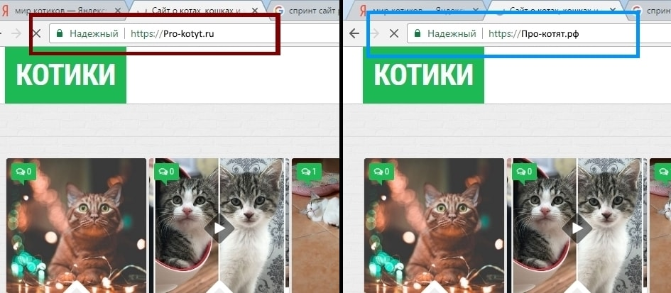 В какой зоне лучше купить домен в латинской или кириллической?